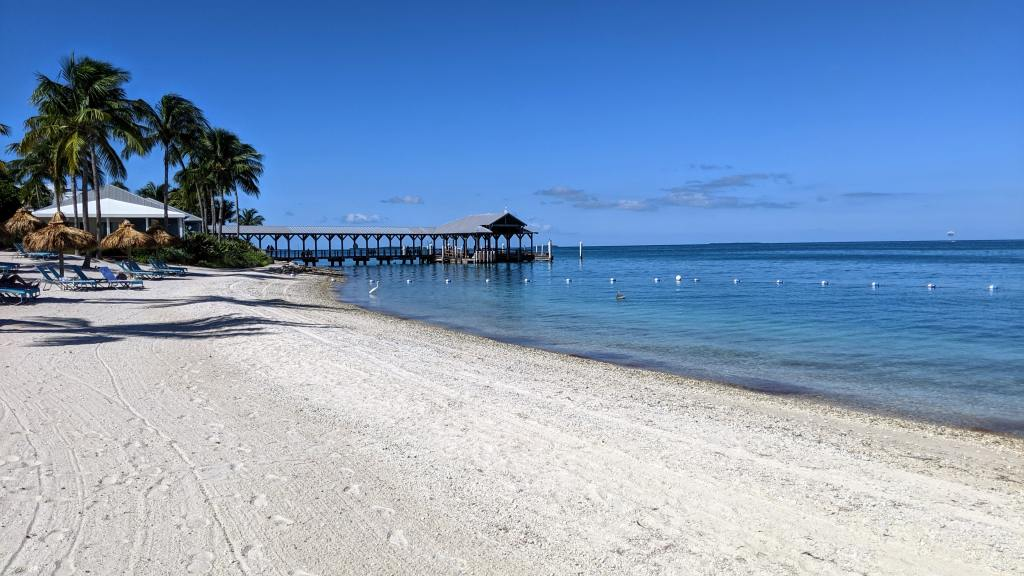 A white sand beach in the Florida Keys with palm trees and a pier reaching out into the blue water