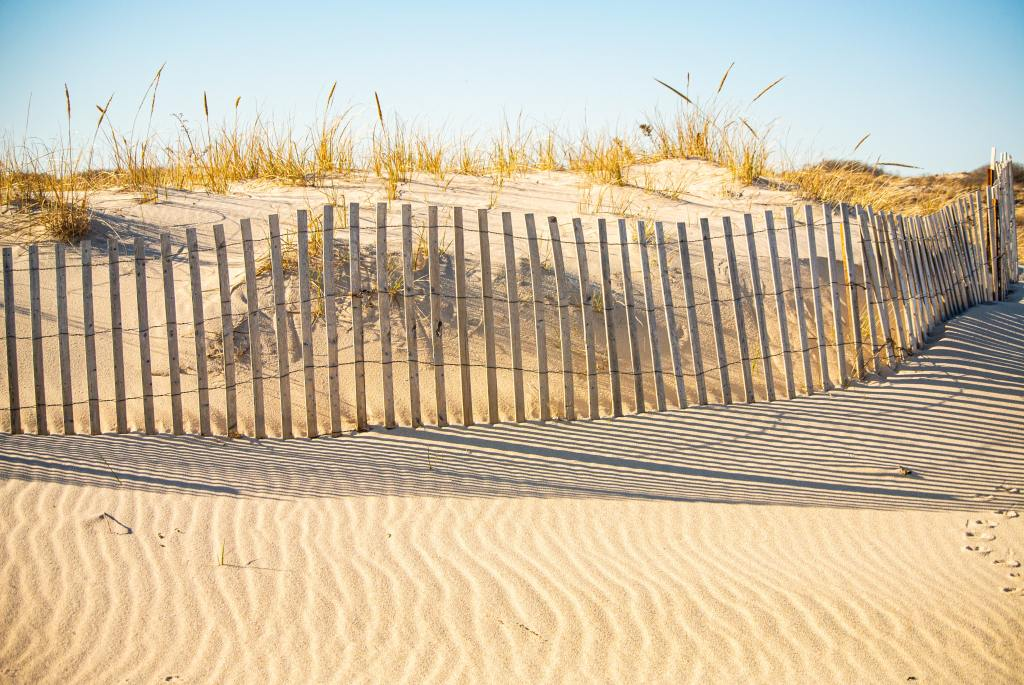 Sandy Long Island beach in the Hamptons with dune fencing