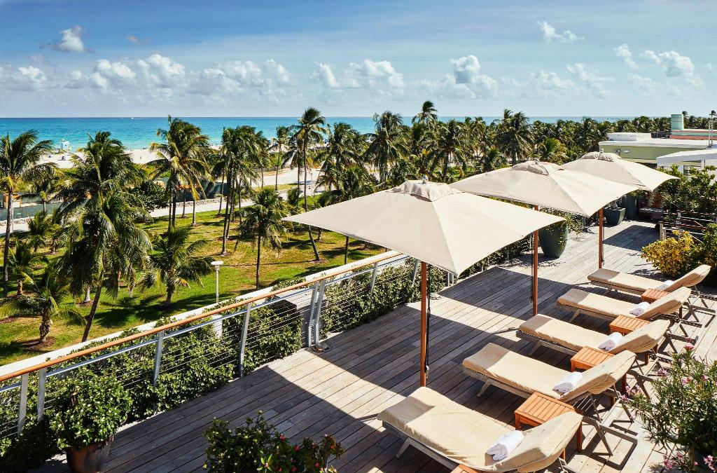 wooden deck with lounge chairs and umbrellas overlooking a row of palm trees and the oceanfront